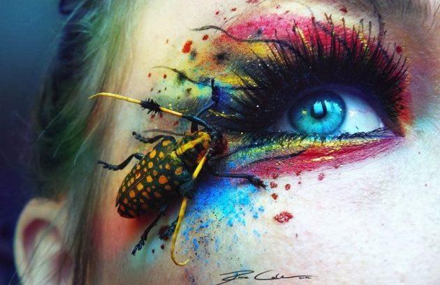 Cách xử trí khi bị côn trùng bay vào mắt